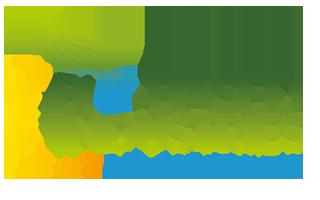 BBI-logo-transparent
